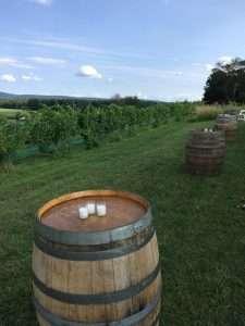 wine barrel rentals for a vineyard wedding