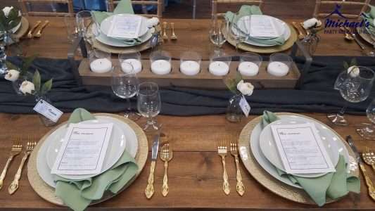 Minimal Garden inspired tablescape designed by Cara of Fox and Lantern. Wedding rentals western MA